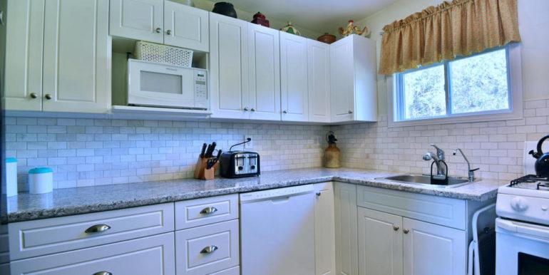 20-3305-5 Kitchen 2