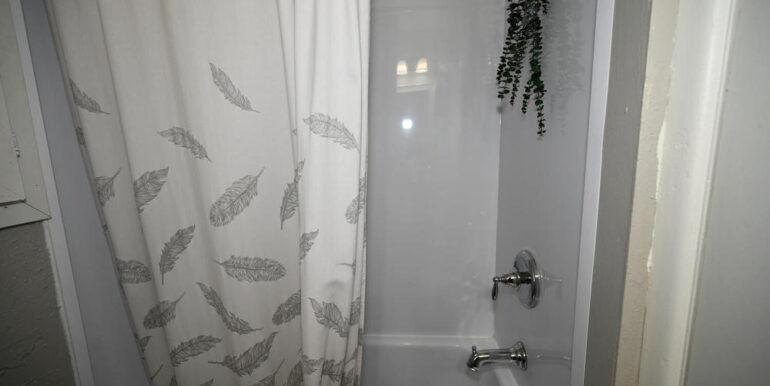 10-20-12 Lower Bathroom 2